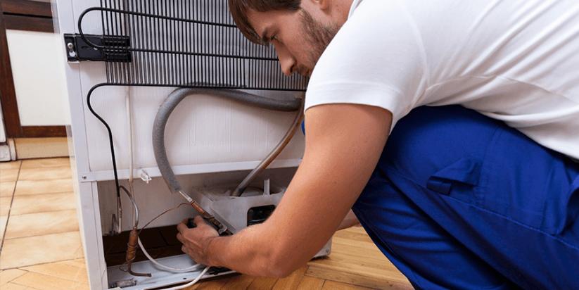 fixing fridge professional